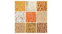 Buy Grain (Daal, Rice, Wheat) online at Gomart pakistan
