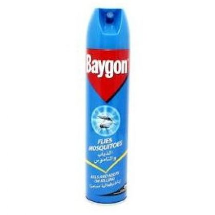 BAYGON INSECT KILLER (600ML)