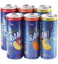 Rani Floats Mango (24x240ml)