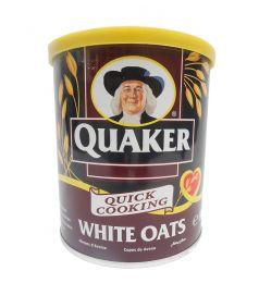 Quaker White Oats Tin (500gm)