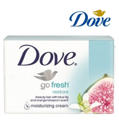 DOVE SOAP GO FRESH RESTORE (113G)